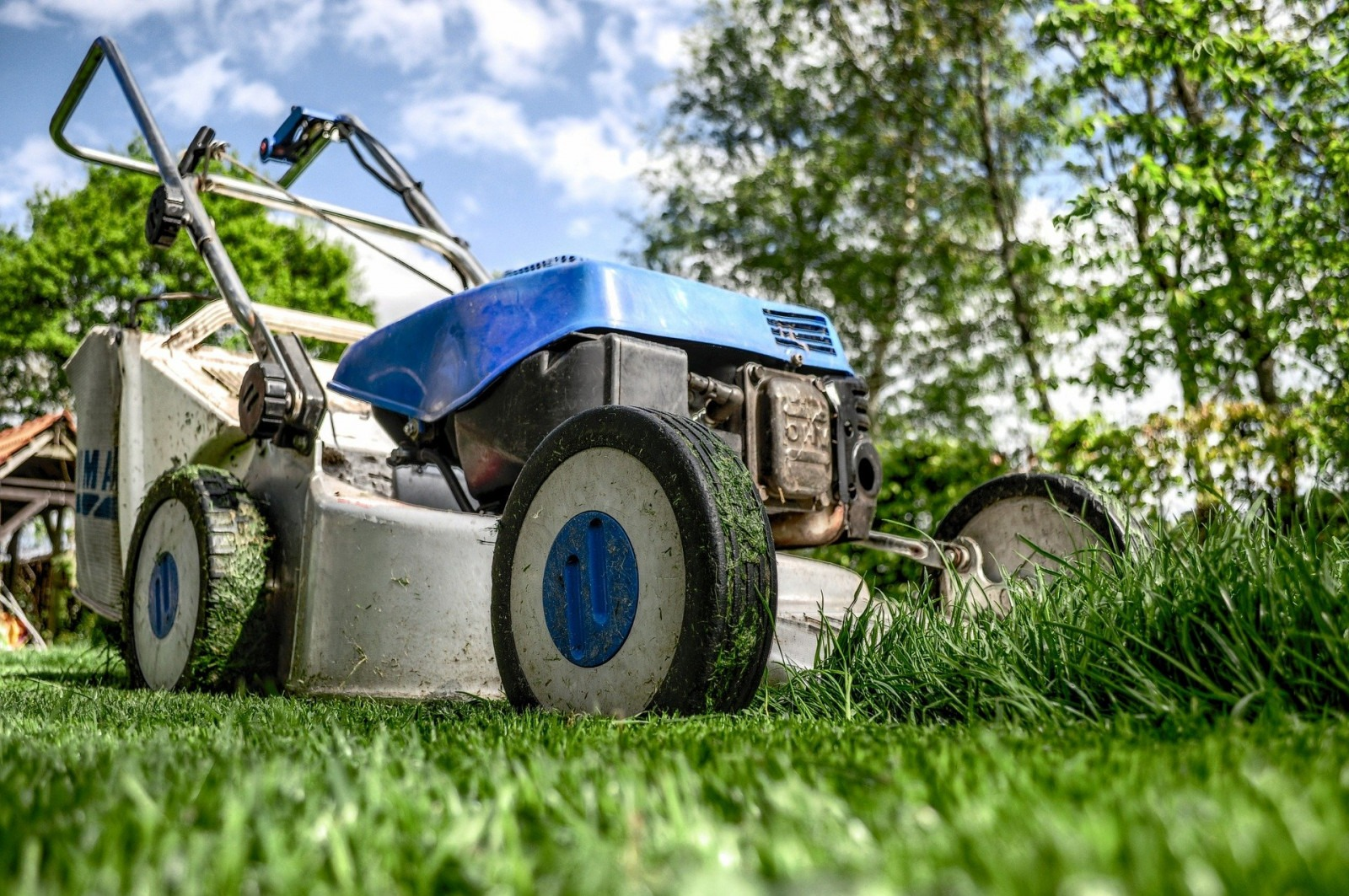 Lawn-Care Scams Sprout up in Spring